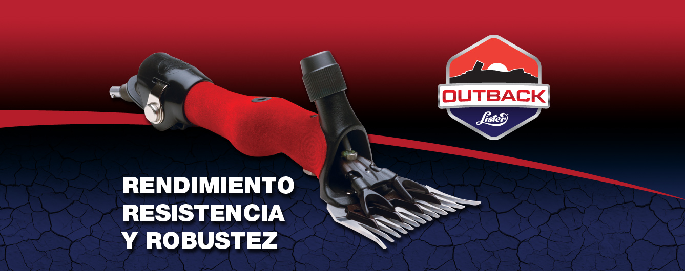 banner_outback